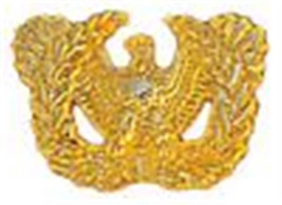 Warrant Officer Small Hat Pin 1 1-8