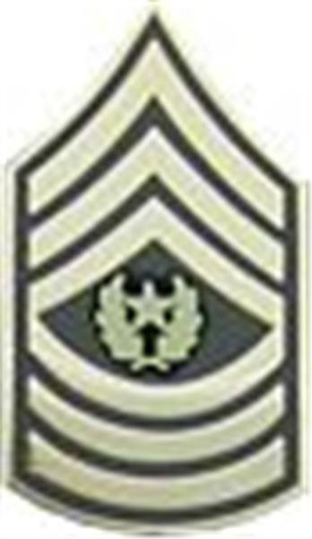 E-9 CSM Small Hat Pin 1 1-4