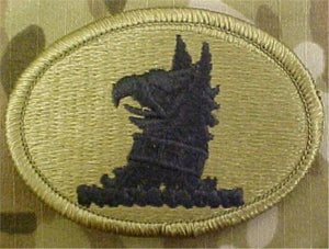 Delaware Army National Guard Multicam  OCP Patch