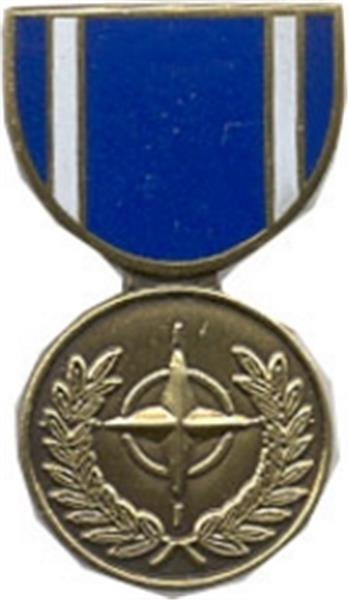 NATO Service Mini Medal Small Pin