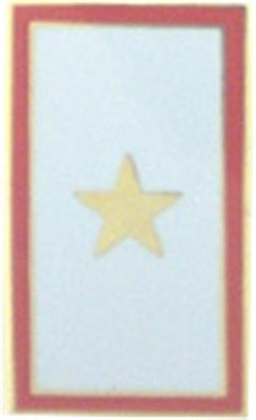 Gold Star Memorial Flag Small Hat Pin