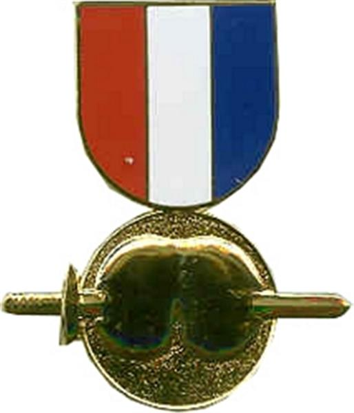 Pain In The Ass Medal Large Pin