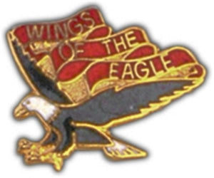 101st AVN BN Small Hat Pin