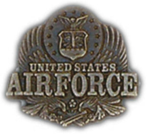 Air Force Eagle Small Pin
