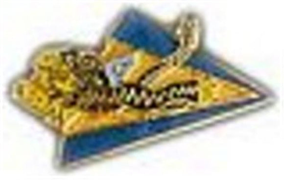 Flying Tiger Small Pin