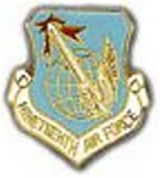 19th Air Force Small Pin