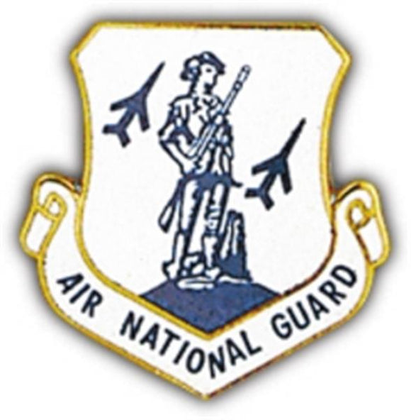 Air National Guard Small Pin