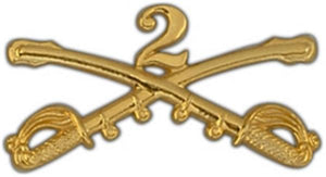 2nd Cavalry Large Pin