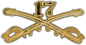 17th Cavalry Large Pin