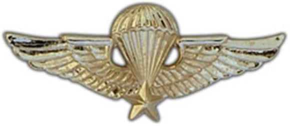 Vietnam Jump Wings Large Pin