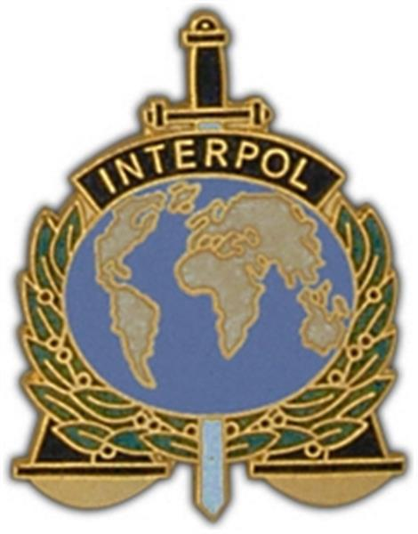 Interpol Large Pin