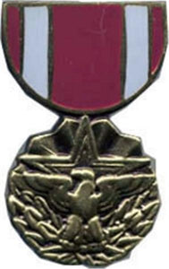Meritorious Service Mini Medal Small Pin