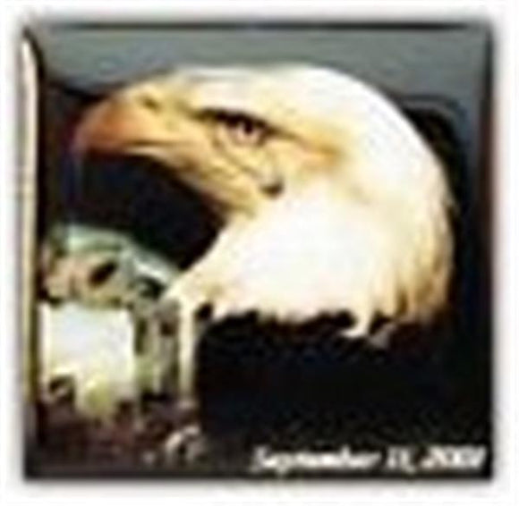 9-11 Eagle Small Pin