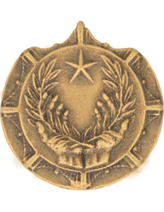 Army Civilian Award For Humanitarian Service Lapel Pin