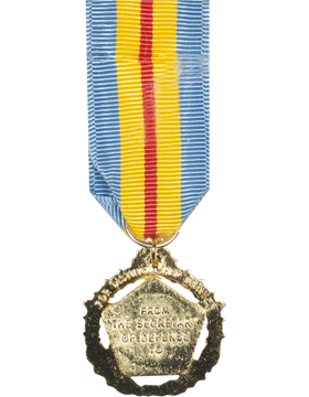 Defense Distinguished Service Mini Medal