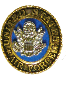 U.S. Air Force Ring Lapel Pin 2 Piece