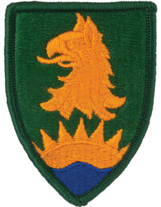 221st Military Police Brigade Patch