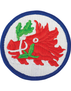 Georgia National Guard Patch