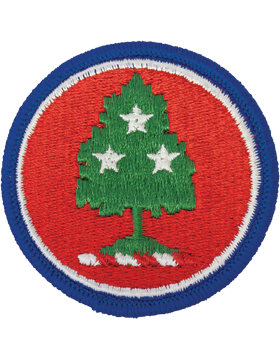 Tennessee National Guard Patch