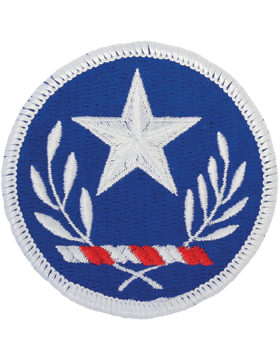 Texas National Guard Patch