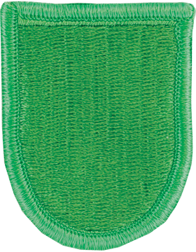 10th Special Forces Group Beret Flash