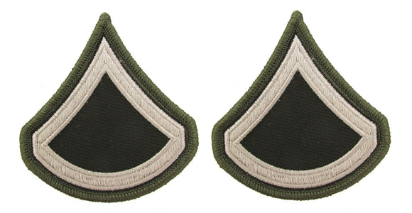 U.S. Army AGSU Chevrons Rank - Pair - Pinks and Greens PFC