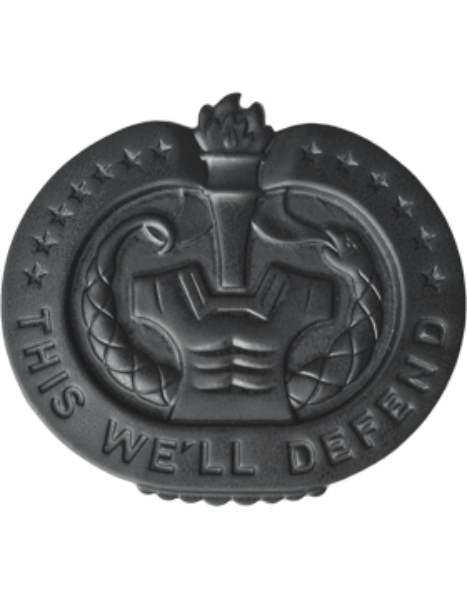 Drill Instructor Badge - Black Metal Insignia