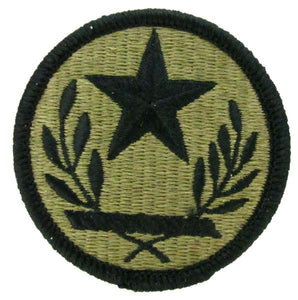 Texas Army National Guard OCP Patch - Scorpion W2