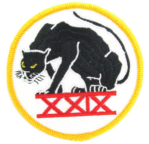 USAF Academy 29th Cadet Squadron Patch - Black Panthers