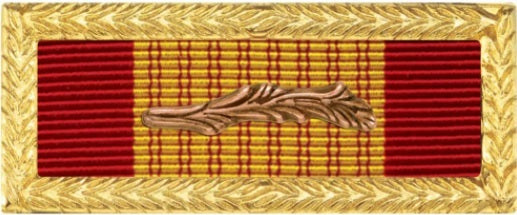 Vietnam Cross of Gallantry with Palm Army Unit Citation Ribbon