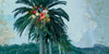 Floral Palm NZ/ Design