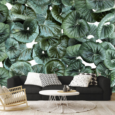 Pacific Fauna | Botanical Leaves Wall Mural by Back to the Wall