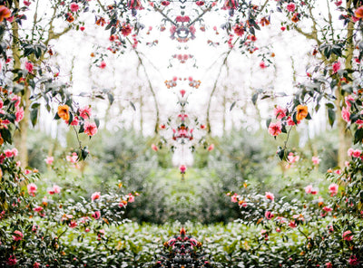 Secret Garden Setting | Wall Mural by Back to the Wall