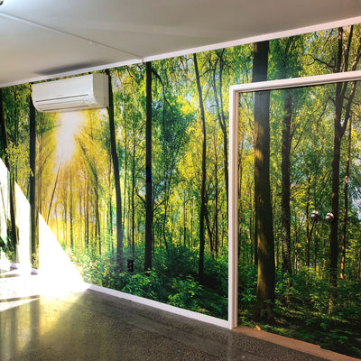 Native Forest Custom Wall Mural for an Office by Back to the Wall