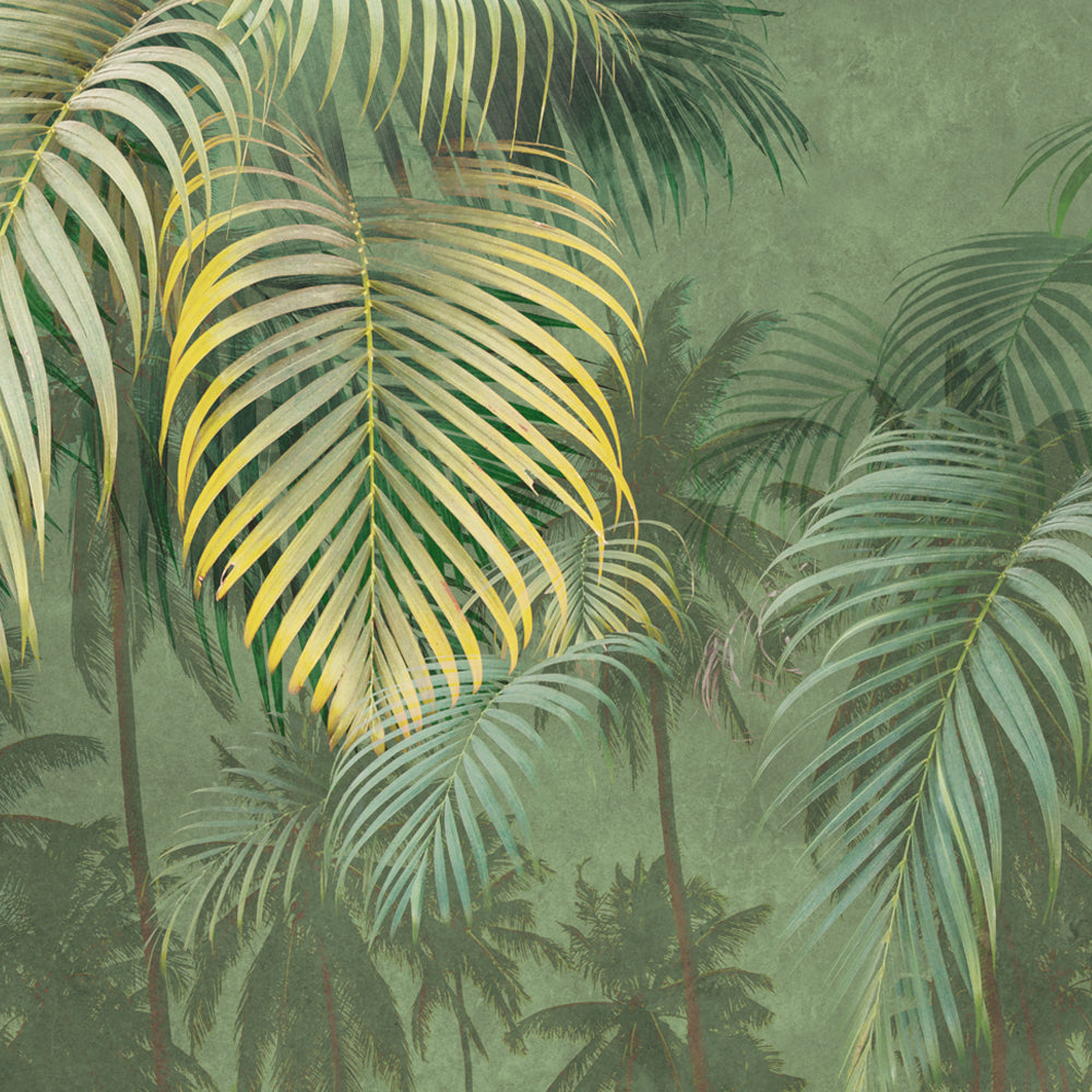 Palm Bleached