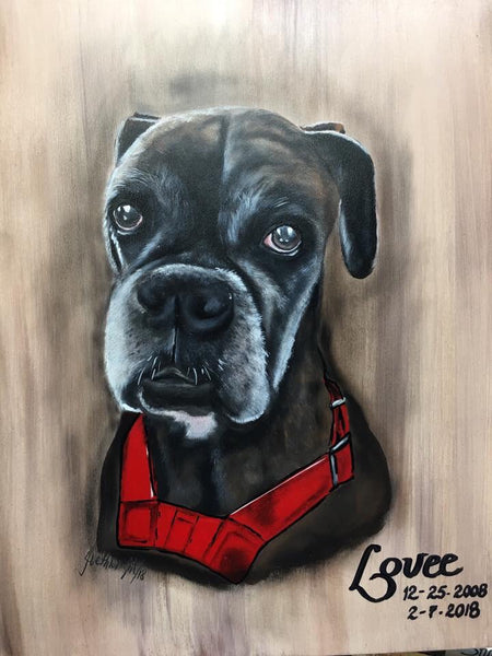 Pet Portraits Photo Gallery