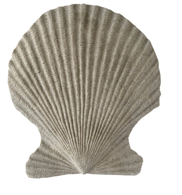 Sand Colored Scallop Wall Décor (16