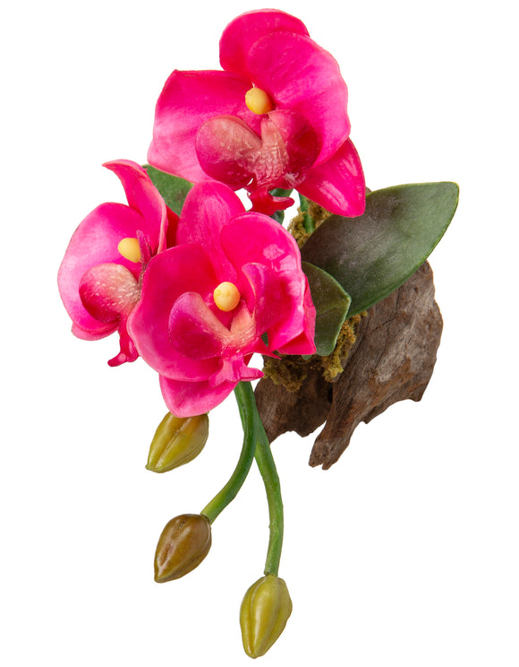 Magnet - Silk Orchid - Hot Pink - OT ORCM 3