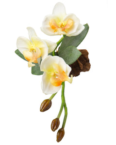 Magnet - Silk Orchid - White/Yellow - OT ORCM 6