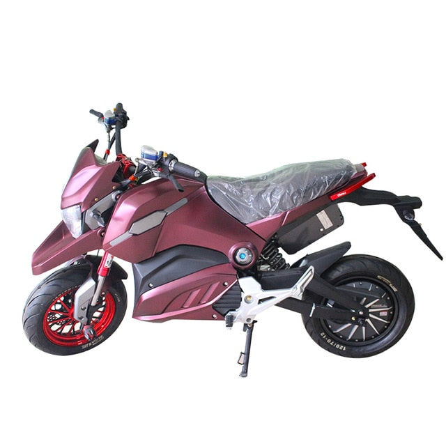 Electric Scooter Electric Bicycle Ebike Customized Motorcycle  Aluminum Alloy Frame bicicleta electrica Electrica Motocicleta
