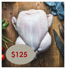 Holiday Turkey - Small (8 lb min) Serves 5-8 SOLD OUT