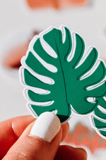 monstera plant sticker