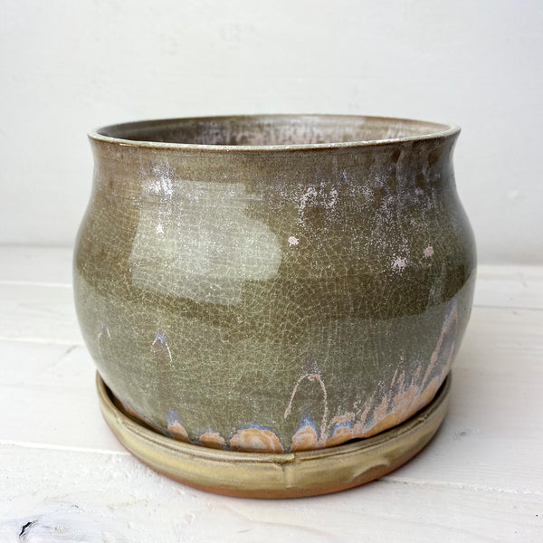 "Planter (6""): Swoon"