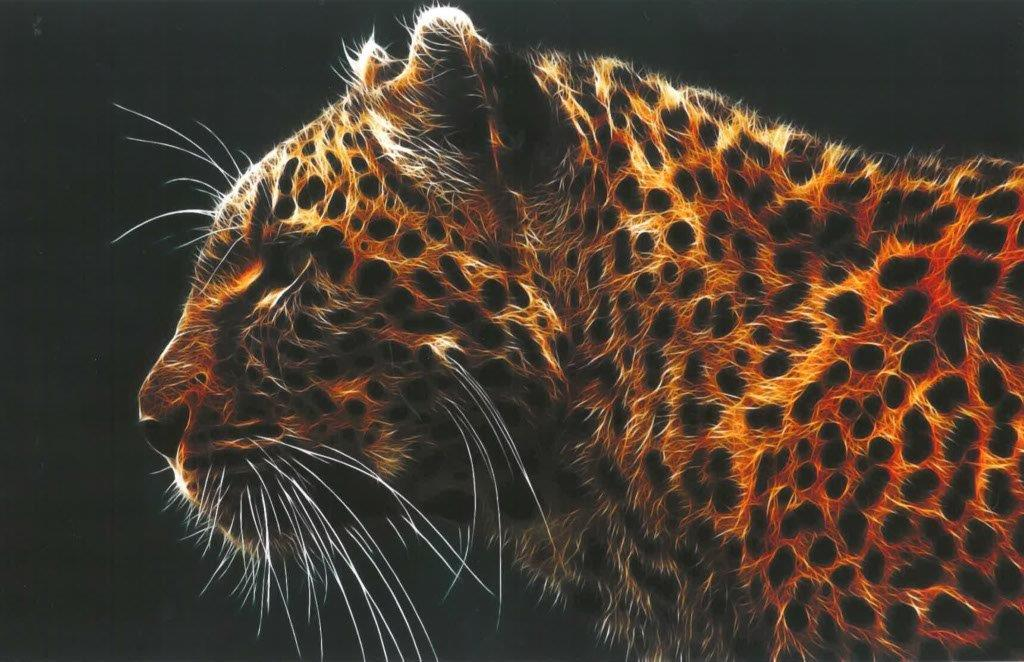 Leopard Office Art Print ANI031 - Flogit2us.com