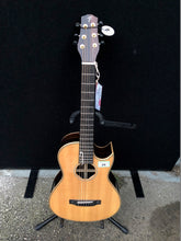 Load image into Gallery viewer, Terry Pack PLRS Parlour Acoustic Guitar - Flogit2us.com