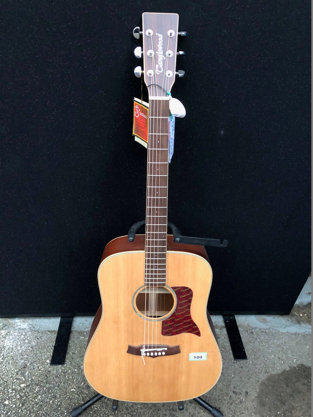 Tanglewood X15-NS Acoustic Guitar