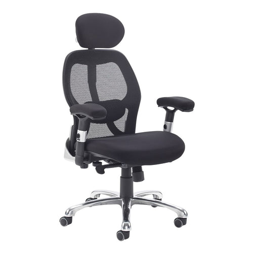 Sandro Mesh Back Executive Chair With Black Air Mesh Seat And Head Rest - Flogit2us.com