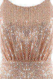 Spellbound Dress-Rose Gold