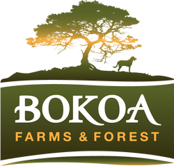Bokoa Farms and Forest
