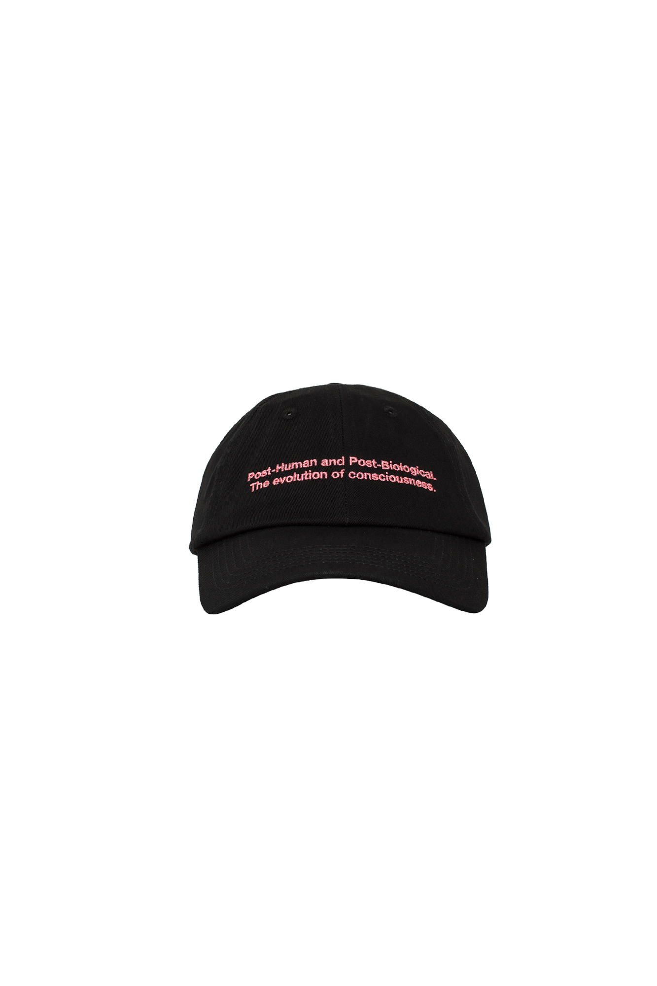Post-Huma Baseball Cap
